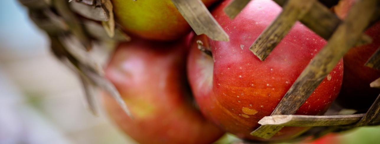 Rețeta noastră nu este secretă: 100% suc de fructe!